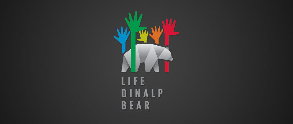 life-dinalp-bear-goodplace
